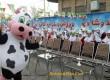 افتتاحیه توزیع شیر مدارس