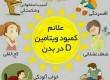 به بهانه اجرای طرح ویتامین دی در مدارس