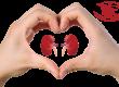 هفته حمایت از بیماران کلیوی