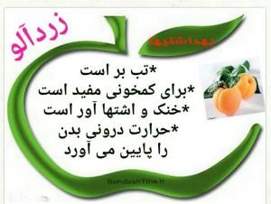 پیام کوتاه تراکت خواص میوه ها