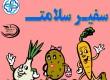 جمع بندی جلسه آموزش تغذیه سالم (سرفصل سفیران سلامت)